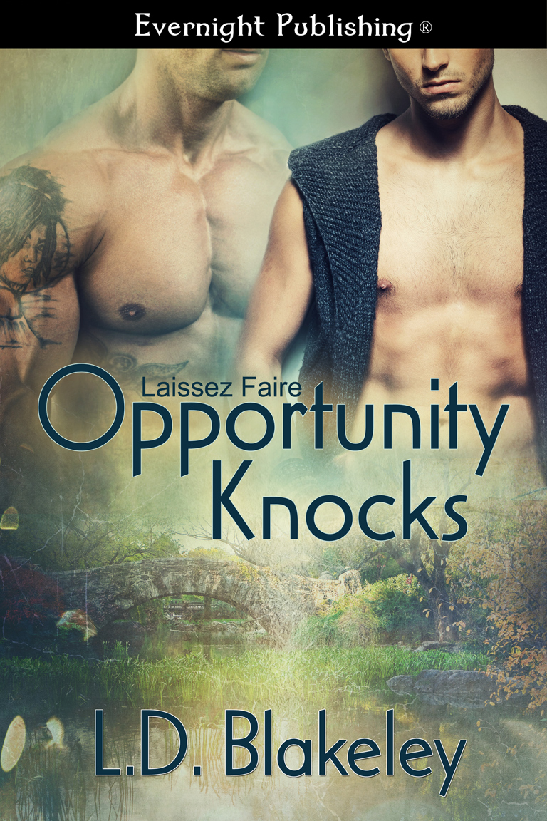 Opportunity Knocks by L.D. Blakeley