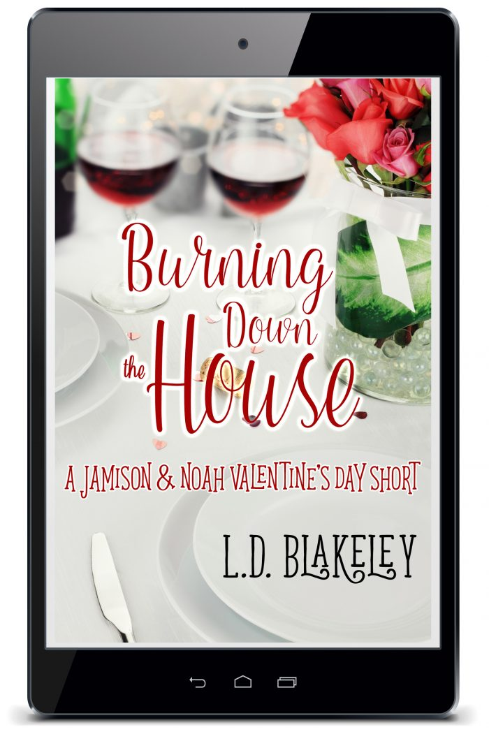 FREE READ | Burning Down The House: A Jamison & Noah Valentine's Day Short