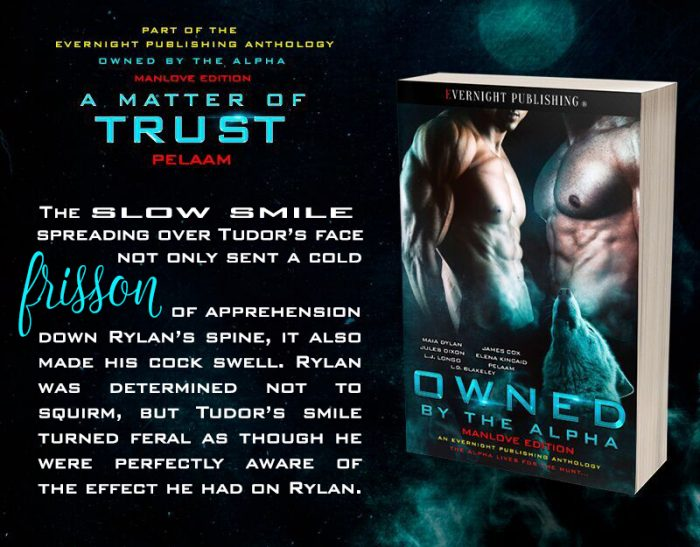 A Matter Of Trust by Pelaam from OWNED BY THE ALPHA MANLOVE