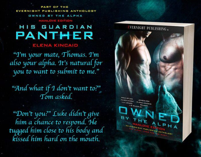 His Guardian Panther by Elena Kincaid from OWNED BY THE ALPHA MANLOVE