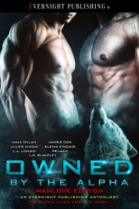 Owned-by-the-Alpha-Antho2-EvernightPublishing2017-MM-eBook-complete-215x323-1.jpg